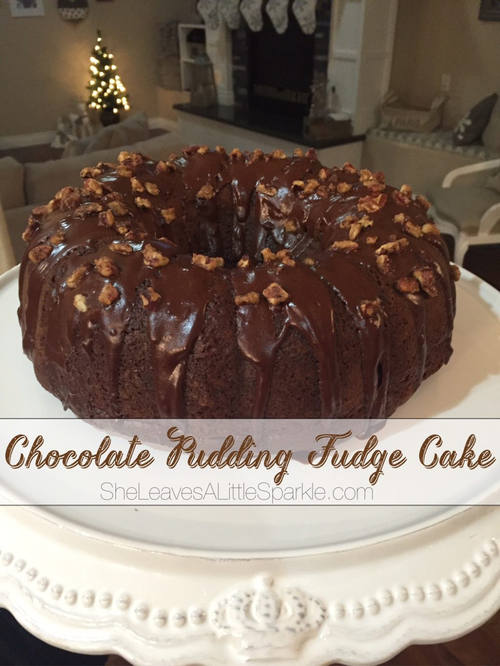 The Best Fudge Cake In Dallas